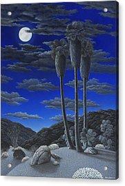 Moonrise Acrylic Print by Snake Jagger