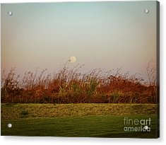 Moonscape Evening Shades Acrylic Print