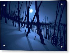 Moonshadows Acrylic Print