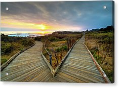 Moonstone Beach Path Acrylic Print