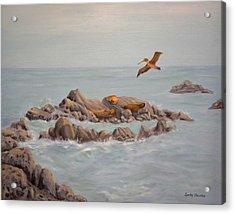 Moonstone Beach Tidepool Acrylic Print