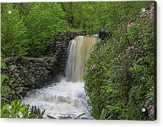 Moore State Park Acrylic Print by Juergen Roth