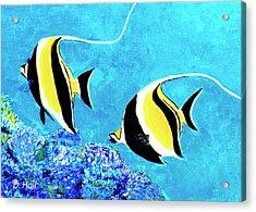 Moorish Idol Fish  #50 Acrylic Print by Donald k Hall