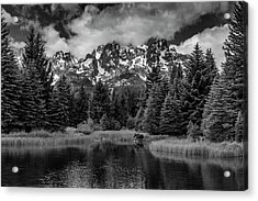 Acrylic Print featuring the photograph Moose At Schwabacher's Landing by Gary Lengyel