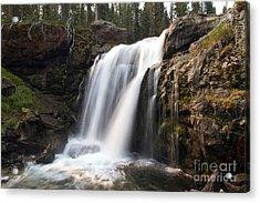 Moose Falls Yellowstone National Park Acrylic Print