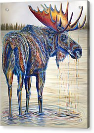 Moose Gathering, 2 Piece Diptych- Piece 1- Left Panel Acrylic Print by Teshia Art