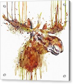 Moose Head Acrylic Print