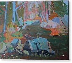 Moose Lips Brook Acrylic Print by Francine Frank