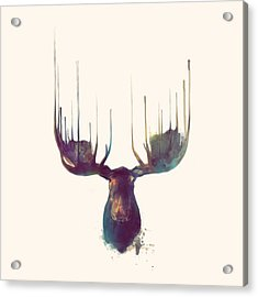 Moose // Squared Format Acrylic Print