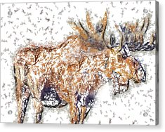 Acrylic Print featuring the digital art Moose-sticks by Elaine Ossipov