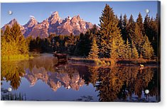 Moose Tetons Acrylic Print