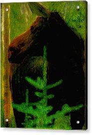 Moose Time Acrylic Print