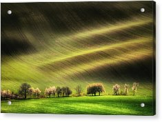 Moravian Fields Acrylic Print by Piotr Krol (bax)