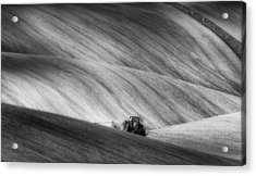 Moravian Seeding Acrylic Print by Piotr Krol (bax)