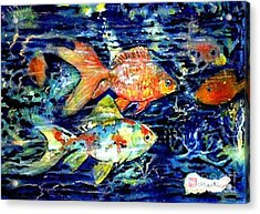 More Gold Fish Acrylic Print by Norma Boeckler