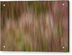 More Lake Grasses Acrylic Print
