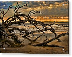 Acrylic Print featuring the photograph More Wood by Joetta West