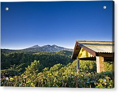 Acrylic Print featuring the photograph Morning At Countryside by Ng Hock How