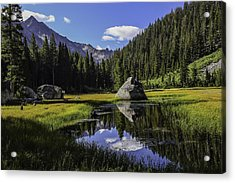 Morning At Grouse Meadow Acrylic Print