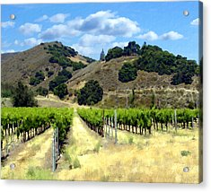 Morning At Mosby Vineyards Acrylic Print by Kurt Van Wagner
