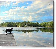 Morning At Pine Lake Acrylic Print