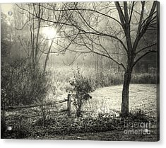 Acrylic Print featuring the photograph Morning Breaking by Betsy Zimmerli