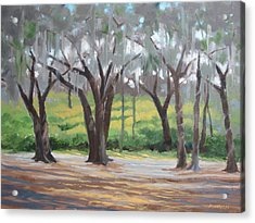 Morning Canopy Acrylic Print by Robert Rohrich
