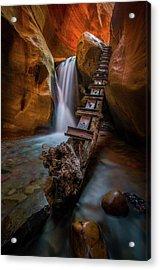 Morning Canyon Glow // Kanarra Falls, Utah Acrylic Print