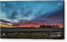 Morning Color Acrylic Print