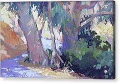 Morning Dance - Catalina Island Acrylic Print