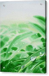 Morning Dew Drops Acrylic Print by Irina Sztukowski