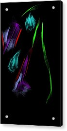 Morning Dew Acrylic Print