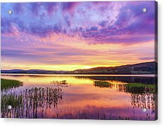 Acrylic Print featuring the photograph Morning Fire by Dmytro Korol