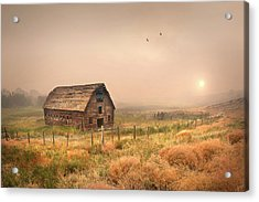 Acrylic Print featuring the photograph Morning Flight by John Poon