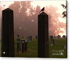 Morning Fog Along The Tennessee Acrylic Print by David Bearden