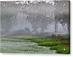 Morning Fog At Brazos Bend Acrylic Print