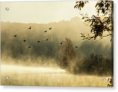Morning Fog On Haley Pond In Rangeley Maine Acrylic Print