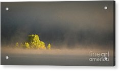 Morning Fog On Jackson Lake Grand Teton National Park  Acrylic Print