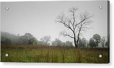 Morning Fog Acrylic Print by Ryan Heffron