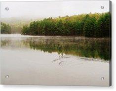 Morning Fog Acrylic Print