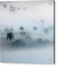 Morning Fog, Vinales Valley Acrylic Print