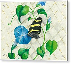 Morning Glories And Butterfly Acrylic Print by Sally Balfany