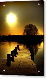 Morning Glory Acrylic Print by Kim Shatwell-Irishphotographer