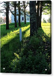 Morning Glory Acrylic Print by Laurie Breton