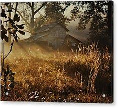 Morning Glory Acrylic Print by Lori Mellen-Pagliaro