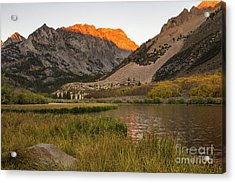 Morning Glow  Acrylic Print