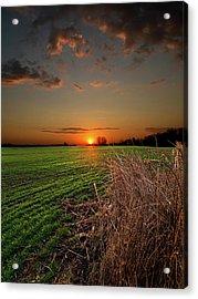Morning Glow Acrylic Print by Phil Koch
