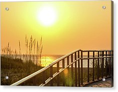Morning Gold Acrylic Print by AM Photography
