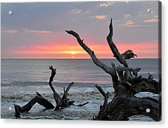 Morning Greeting Acrylic Print by Bruce Gourley