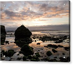 Acrylic Print featuring the photograph Morning Gulls by Lora Lee Chapman